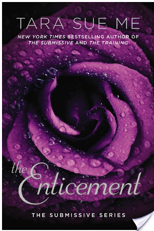 Review:  The Enticement by Tara Sue Me